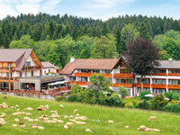 Grüner Wald Kronberg