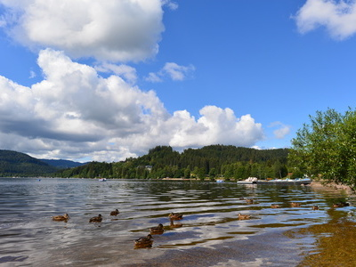 Titisee, Copyright: Fotolia